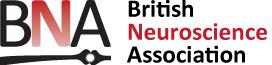 Two-Photon-imaging-BNA-webinar